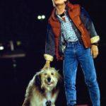 バックトゥザフューチャー|ドクの愛犬アインシュタインの犬種は?